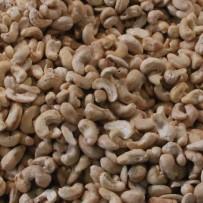Cashew Naturel - Elbnuts Markthal