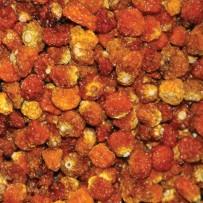Inca bessen - superfoods - Elbnuts Markthal